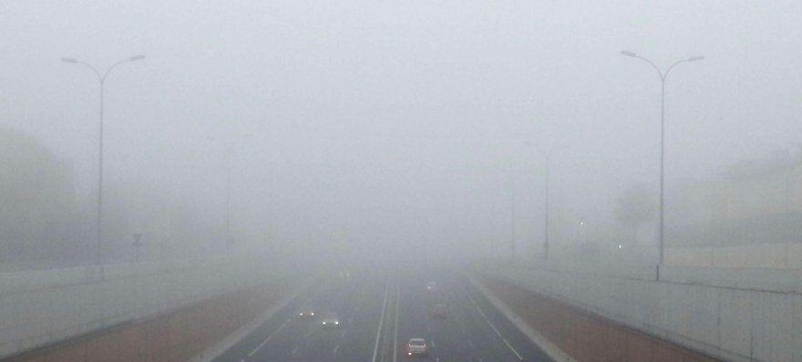niebla (2)